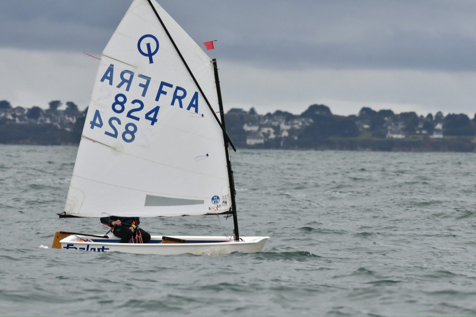 optimist sail new